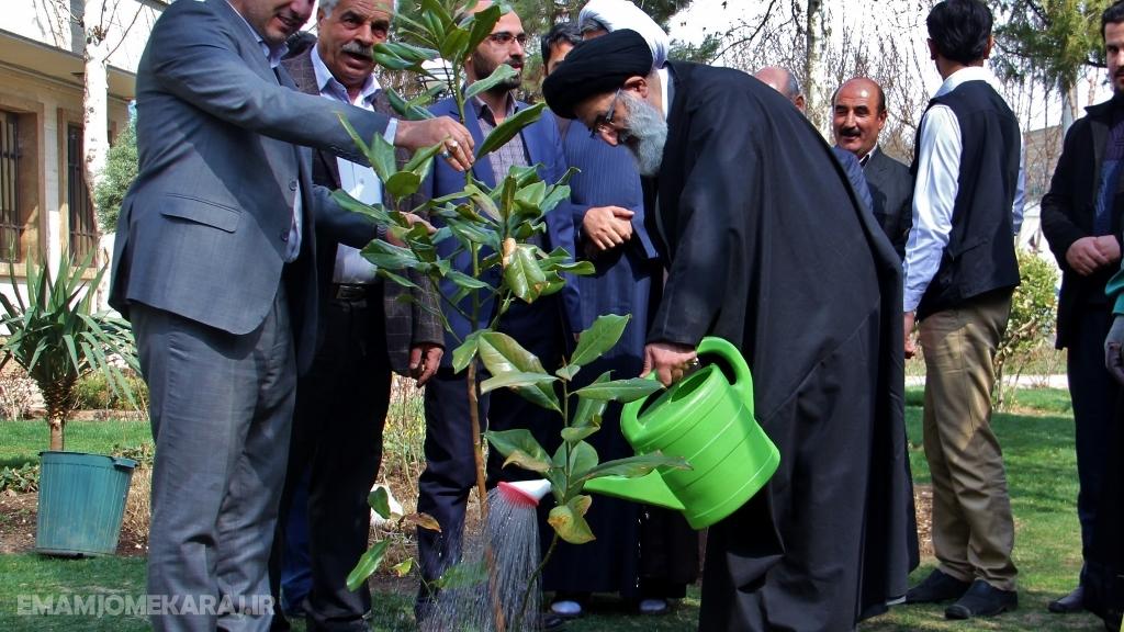 فرهنگ درختکاری و حفظ محیطزیست، مختص به یک روز از سال نیست