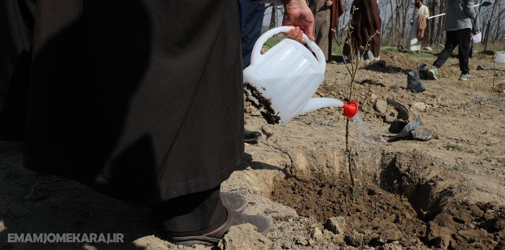 گفتمان غالب مردم حفظ محیط زیست شود/ تأکید بر کاشت درخت به ازای تولد هر نوزاد